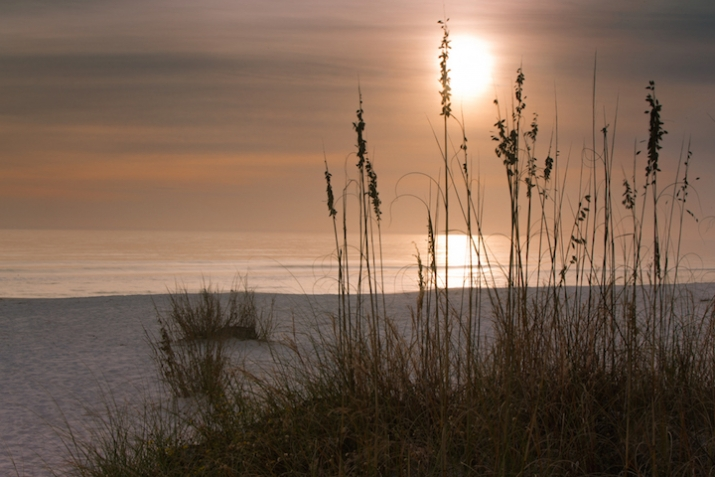 Mexico-Beach-Sunset-Sea-Oats