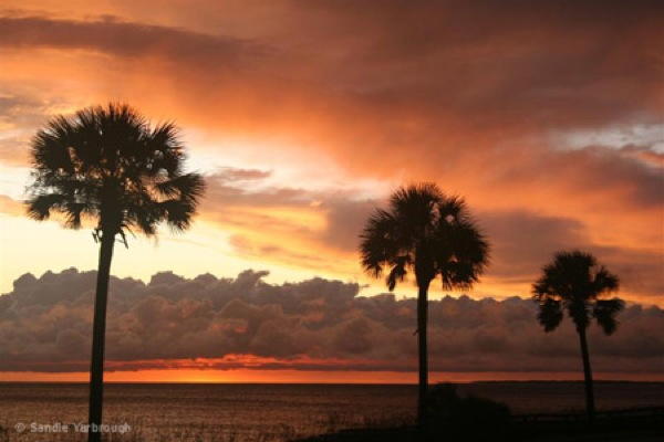 mexico-beach-fl-sunset-5_001