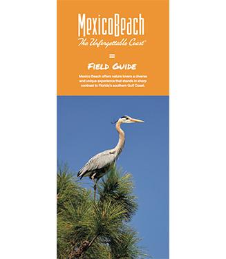 field-guide